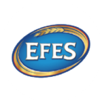 efes beer logo